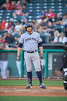 AJ Reed (24) of the Round Rock Express bats against the Salt Lake Bees at Smith's Ballpark on June 10, 2019 in Salt Lake City, Utah. The Bees defeated the Express 9-7. (Stephen Smith/Four Seam Images)