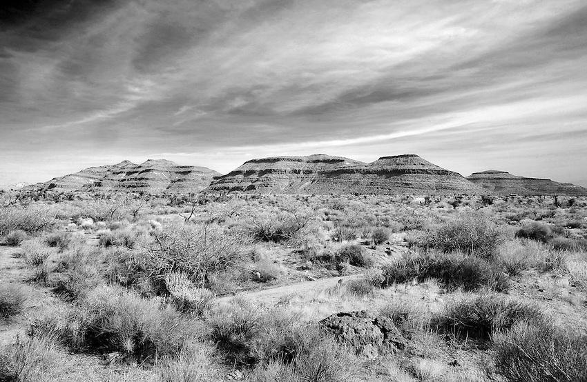 mojave desert 2012
