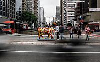 S&Atilde;O PAULO,SP, 27.04.2017 - COW-PARADE - Obras de interven&ccedil;&atilde;o art&iacute;stica s&atilde;o vistas na avenida Paulista na tarde desta quita-feira (27). Obras dos artistas Does Hdv, Glaucio Diogenes, Douglas Reis, Kiko Cesar e Luiz Almeida estar&atilde;o espalhadas pela avenida durante toda a Cow Parade SP 2017.<br /> (Foto: Fabricio Bomjardim / Brazi Photo Press)