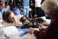 SAO PAULO, SP, 15 de junho 2013-O Juiz Mr Dietmar Sagursky da Alemanha analiza o  Gato da raca Maine Coon na Exposição Internacional de Gatos de Raça do Clube Brasileiro do Gato. O evento começa às 10h e termina às 17h em ambos os dias, e tem a entrada gratuita para visitante.A Sociedade Hispano Brasileira, no bairro do Ipiranga, sedia o evento, que apresenta o número recorde de 300 felinos. A última edição, em março, contou com 250 gatos de 20 diferentes raças, além de aproximadamente mil visitantes.Na Rua Ouvidor Portugal 541 Ipiranga.ADRIANO LIMA / BRAZIL PHOTO PRESS).