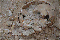 BNPS.co.uk (01202 558833) <br /> Pic: BournemouthUniversity/BNPS<br /> <br /> The remains of a skull from the Roman era found at the Winterbourne Kingston excavation. <br /> <br /> <br /> A group of first year university students have made one of the most significant archeological finds of recent times after discovering the 1,700-year-old remains of a wealthy Roman family.<br /> <br /> The budding archaeologists discovered a grave containing five super-rich Romans in a farmer's field in rural Dorset just metres from where a 4th century villa was found.<br /> <br /> Although more than 700 Roman villas have been found in Britain, it is the first time ever the people who lived in them have been uncovered.<br /> <br /> Experts have described the find as &quot;hugely significant&quot; - and say it could provide vital clues to who was living in Britain around 350 AD.<br /> <br /> Around 85 students, mostly aged in their late teens and early 20s, made the landmark discovery after carrying out a study on a corn field near Winterbourne Kingston near Blandford in Dorset.