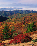 Autumn from Round Bald, Appalachian Trail, TN-NC Border