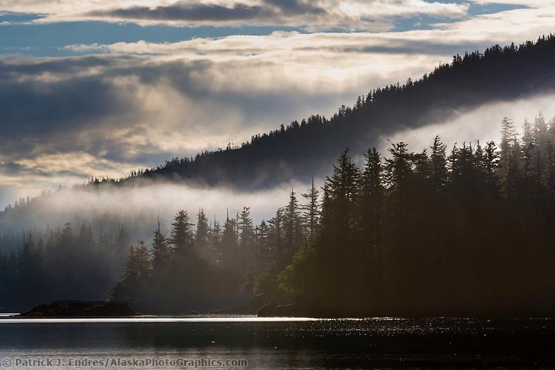 Coastal shore along western Prince William Sound, Chugach National Forest, Alaska.