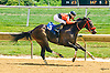 Concord Joe winning at Delaware Park on 7/23/16