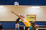 SWCID Volleyball Tournament