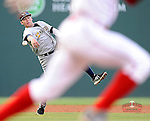 Photo of the Charleston RiverDogs in a game against the Greenville Drive on Wednesday, August 28, 2013, at Fluor Field at the West End in Greenville, South Carolina. (Tom Priddy/Four Seam Images)