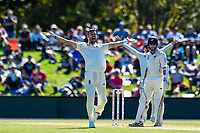 James Anderson of England appeals for the wicket of Kane Williamson of the Black Caps during Day 2 of the Second International Cricket Test match, New Zealand V England, Hagley Oval, Christchurch, New Zealand, 31th March 2018.Copyright photo: John Davidson / www.photosport.nz