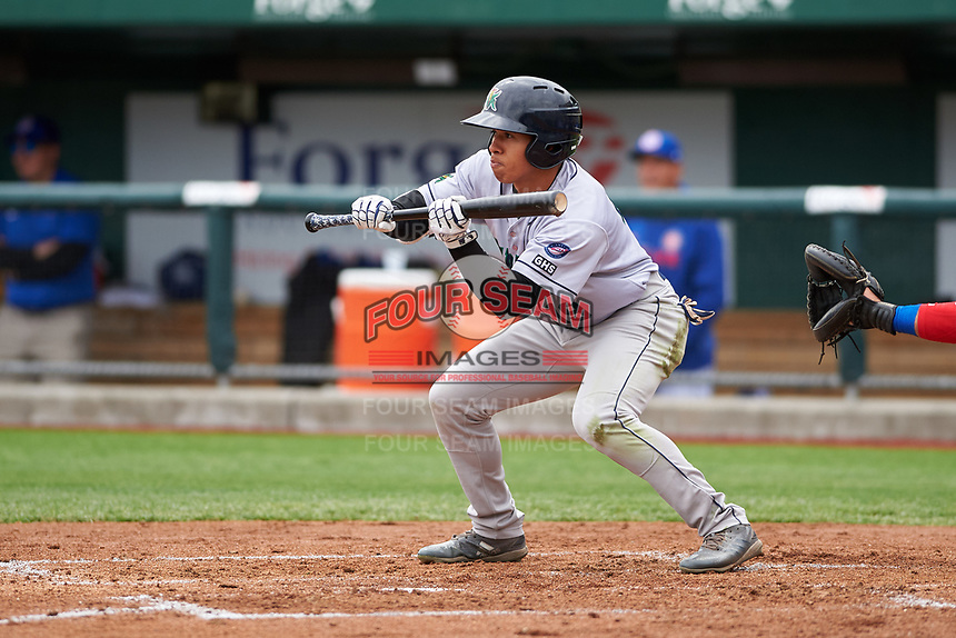 Cedar Rapids Kernels Gabriel Maciel (19) shows bunt during a Midwest League game against the South Bend Cubs at Four Winds Field on May 8, 2019 in South Bend, Indiana. South Bend defeated Cedar Rapids 2-1. (Zachary Lucy/Four Seam Images)