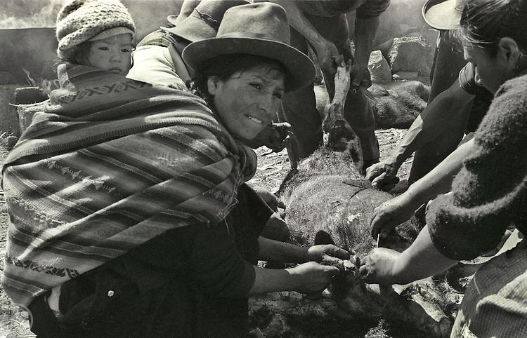 Festivity in Peru
