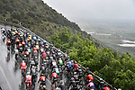 Action from a very wet Stage 5 of the 2019 Giro d'Italia, running 140km from Frascati to Terracina, Italy. 15th May 2019<br /> Picture: Fabio Ferrari/LaPresse | Cyclefile<br /> <br /> All photos usage must carry mandatory copyright credit (© Cyclefile | Fabio Ferrari/LaPresse)