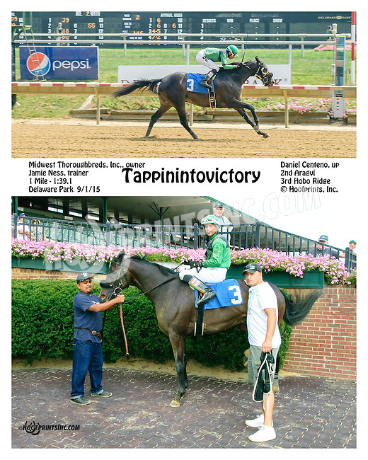 Tappinintovictory winning at Delaware Park on 9/1/15