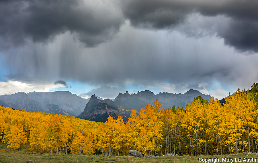 Uncompahgre National Forest, Colorado: Rain clouds over peaks of the Cimarron Range and fall colored aspen groves