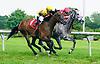 Boreale winning at Delaware Park on 6/14/17