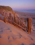 Cape Cod National Seashore, MA<br /> Morning light on buried sand fences along the dunes of Head of the Meadows Beach