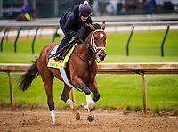 LOUISVILLE, KY - MAY 04: Patch gallops at Churchill Downs on May 04, 2017 in Louisville, Kentucky. (Photo by Alex Evers/Eclipse Sportswire/Getty Images)