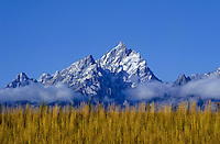 Grand Teton peak and grass in Wyoming, USA