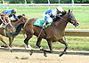 Jade's Revenge winning at Delaware Park on 6/30/10