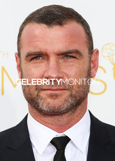 LOS ANGELES, CA, USA - AUGUST 25: Actor Liev Schreiber arrives at the 66th Annual Primetime Emmy Awards held at Nokia Theatre L.A. Live on August 25, 2014 in Los Angeles, California, United States. (Photo by Celebrity Monitor)