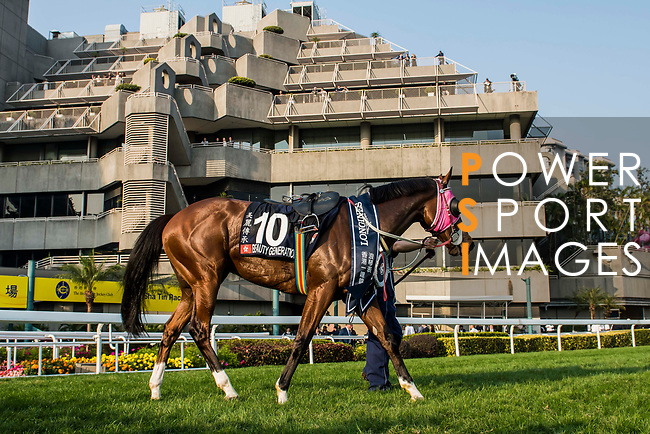 Jockey Derek K C Leung riding Beauty Generation wins in the Longines Hong Kong Mile (G1, 1600m) during the Longines Hong Kong International Races at Sha Tin Racecourse on December 10 2017, in Hong Kong, Hong Kong. Photo by Victor Fraile / Power Sport Images