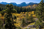 fall, color, wetland, stream, willows, peaks, trees, forest, mountains, landscape, scenic, afternoon, Rocky Mountain National Park, Colorado, Rocky Mountains, USA