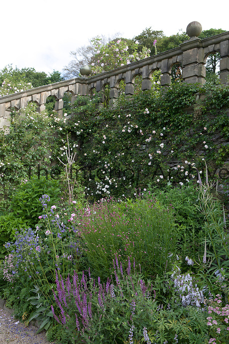 Summer border in the Lower Garden at Haddon Hall