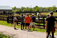 GEORGETOWN, KENTUCKY, MAY 06: Fans gather around Silver Charm at 14th Annual Fundraiser at Old Friends Farm on May 6, 2018 in Georetown, Kentucky. ( Photo by Sue Kawczynski/Eclipse Sportswire/Getty Images)