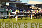 Listowel Races