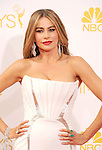 66th Annual Primetime Emmy Awards - Arrivals  8-25-14