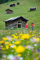 Toesens, Tiroler Oberland, Tyrol, Austria, June 2009. Hiking in the green fields full of colourful flowers of the Pfundser Tschey Valley between the farmers sheds. The Region of the Tyrolian Highlands offer many different options for outdoor adventures, leisure and relaxing. Photo by Frits Meyst/Adventure4ever.com