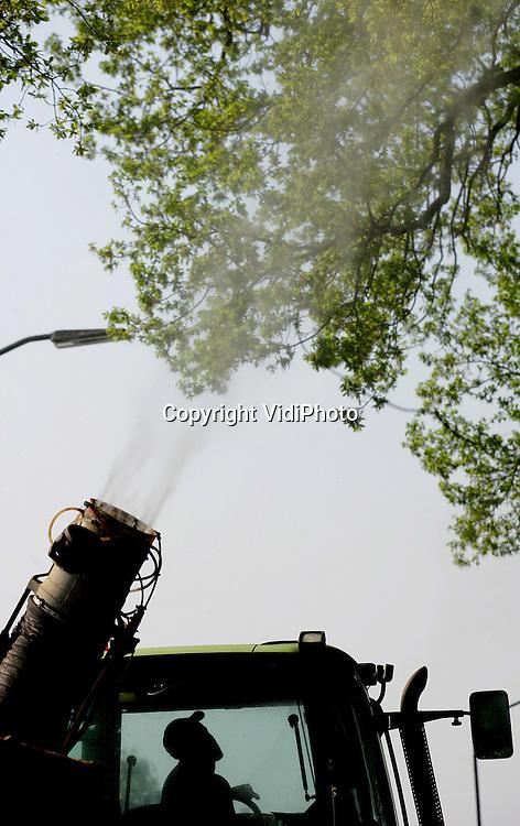 Foto: VidiPhoto..MILL - Medewerkers van boomverzorgsbedrijf Henri Kuppen uit Mill zijn dinsdag in Noord-Brabant begonnen met de bestrijding van de eikenprocessierups. Met een speciaal biologisch bacteriepreparaat worden eikenbomen behandeld. Als de kleine rupsen er van eten gaan ze dood. De eikenprocessierups, die een gevaar vormt voor de volksgezondheid, is inmiddels een nationaal probleem. In 1996 waren er 750.000 eikenbomen besmet met de rups, waarvan de brandharen oogletsel veroorzaakt, in 2004 waren dat er al 5,5 miljoen.