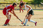 2014 Mascenic Fall Sports