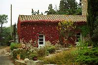 The reception building, Domaine Pech-Redon, Coteaux du Languedoc la Clape, Narbonne, Herault, Languedoc-Roussillon, France