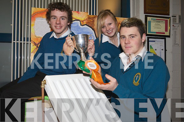 SCIENTISTS: Students John Prendergast, Fiona Reidy and Brian Daly were highly commended and won a display award for their project Fridgeco at the BT Young Scientists & Technology Exhibition last week.