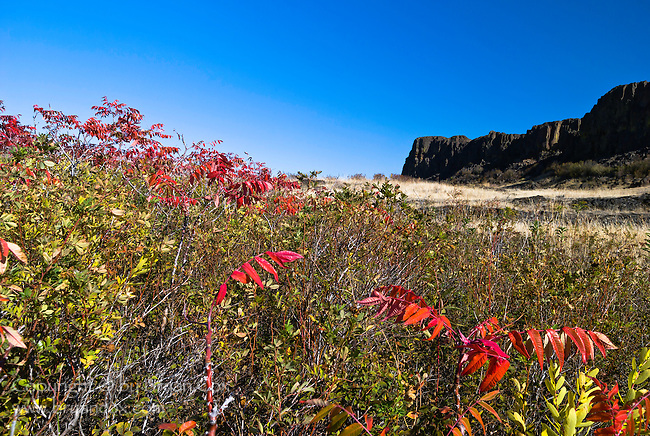 Sumac and Horse Thief Butte