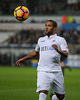 Wayne Routledge of Swansea City chases the ball during the Premier League match between Swansea City and Sunderland at The Liberty Stadium, Swansea, Wales, UK. Saturday 10 December 2016
