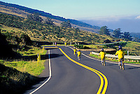 An organized bike group cruises down Haleakala's Crater Road through the Haleakala Ranch at about a 6,000-ft. elevation. One of Maui's most popular activities for tourists.