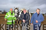 Jerry Dennehy, Farmers Bridge, Tralee ,Nicholas Greaney, Castleisland, John Joe McSweeney (Banteer) at the Abbeydorney Ploughing Match on Sunday