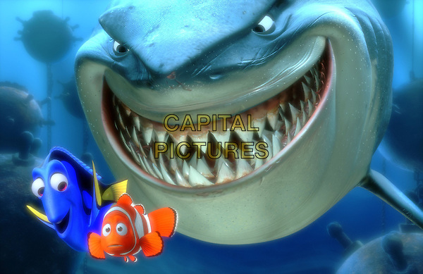 SCENE.in Finding Nemo.*Filmstill - Editorial Use Only*.CAP/NFS.Supplied by Capital Pictures.