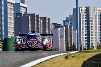 FIA WEC FREE PRACTICE - 6 HOURS OF SHANGHAI (CHN) ROUND 5 11/16-18/2018