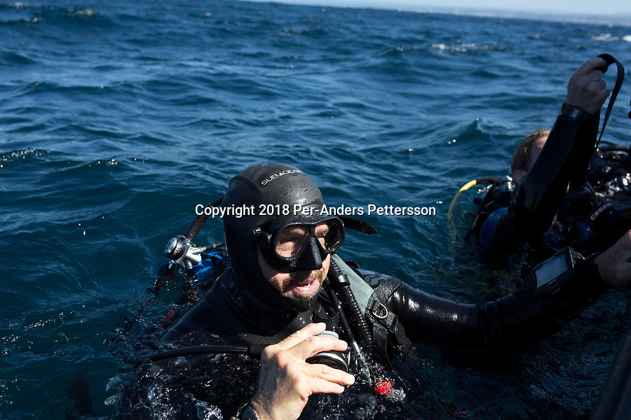 MARGATE, SOUTH AFRICA APRIL 25: A diver in the water after a shark dive, with an African Adventure diving boat, during an early morning dive at Protea Banks on April 25, 2018 in KwaZulu Natal, South Africa. The area is one of the best in South Africa for shark encounters. (Photo by: Per-Anders Pettersson/Getty Images)