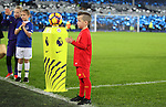 Liverpool and Everton mascots before the English Premier League match at Goodison Park, Liverpool. Picture date: December 19th, 2016. Photo credit should read: Lynne Cameron/Sportimage