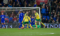 Marco Stiepermann of Norwich City (right) celebrates scoring his side's first goal during the Sky Bet Championship match between Cardiff City and Norwich City at the Cardiff City Stadium, Cardiff, Wales on 1 December 2017. Photo by Mark  Hawkins / PRiME Media Images.