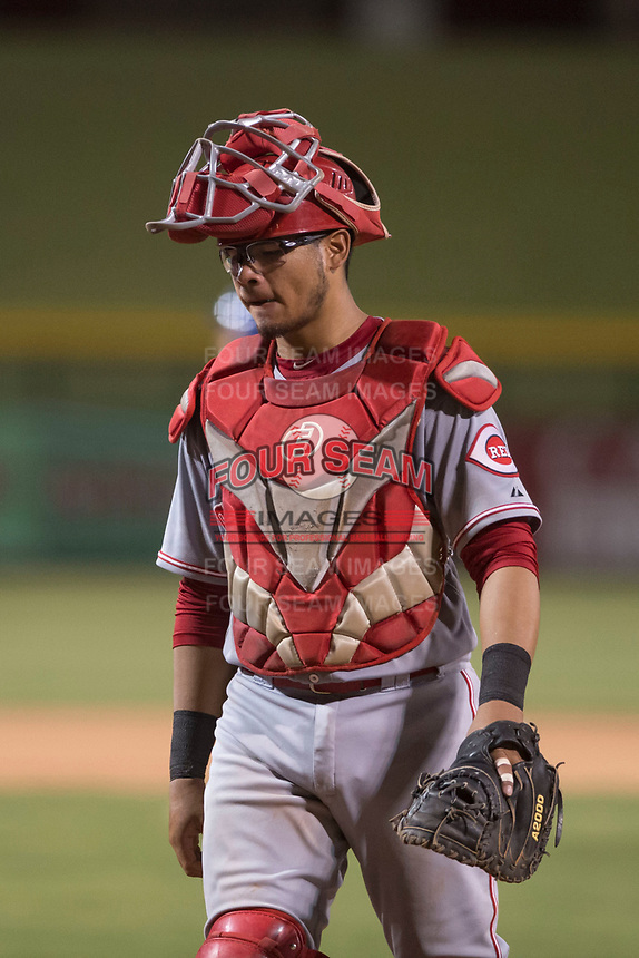 AZL Reds catcher Elvis Gomez (4) during an Arizona League game against the AZL Cubs 1 at Sloan Park on July 13, 2018 in Mesa, Arizona. The AZL Cubs 1 defeated the AZL Reds 4-1. (Zachary Lucy/Four Seam Images)