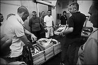 Europe/Italie/Ligurie/Imperia: A la criée du port de pêche d'Imperia