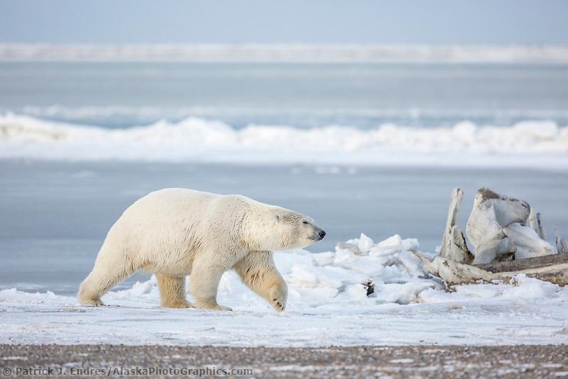 Barter Island, Alaska.