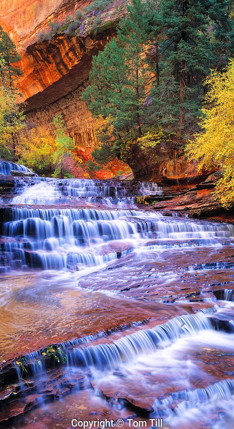 Archangel Cascades, North Fork of Virgin River, Zion National Park, Utah  Near the Subway