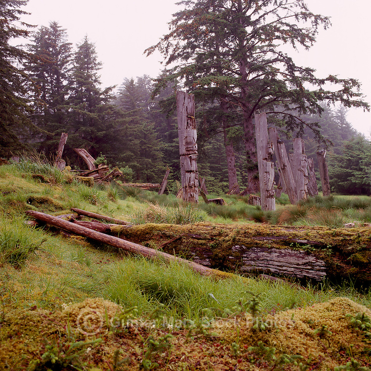 Ninstints (UNESCO World Heritage Site), Haida Gwaii (Queen Charlotte Islands), Northern BC, British Columbia, Canada - Historic Haida Mortuary Totem Poles on Anthony Island (Skung Gwaii), Gwaii Haanas National Park Reserve and Haida Heritage Site