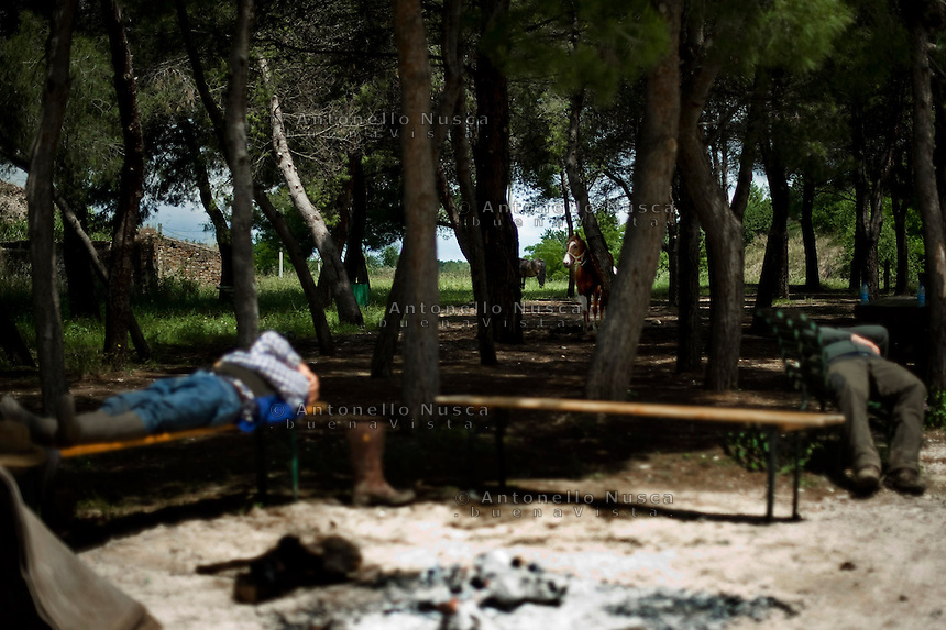 I mandriani si riposano durante una sosta lungo l'antico tratturo che dalla puglia porta alle montagne di Frosolone in Molise. Cowboys rest after leading the Colantuono family's herd toward a cooler climate.