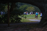 Nelly Korda (USA) heads down 4 during round 3 of the 2019 US Women's Open, Charleston Country Club, Charleston, South Carolina,  USA. 6/1/2019.<br /> Picture: Golffile | Ken Murray<br /> <br /> All photo usage must carry mandatory copyright credit (© Golffile | Ken Murray)
