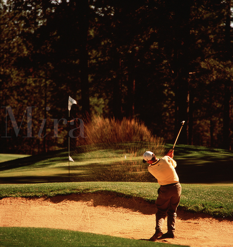 A golfer hits out of the bunker on the Widgi Creek Course. Bend, Oregon.